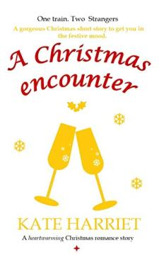 A Christmas Encounter - Book cover
