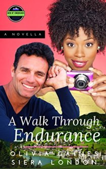A Walk Through Endurance - Book cover