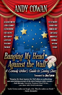 Banging My Head Against the Wall - Book cover
