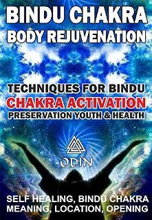 Bindu Chakra – Body Rejuvenation - Book cover