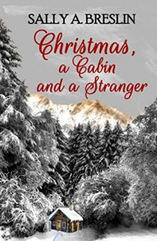 Christmas, a Cabin and a Stranger - Book cover