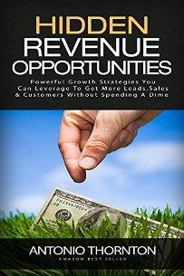 Hidden Revenue Opportunities - Book cover