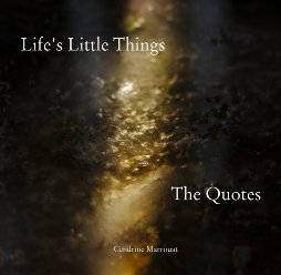 Life's Little Things: The Quotes - Book cover