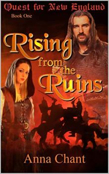 Rising from the Ruins - Book cover