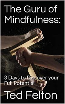 The Guru of Mindfulness - Book cover