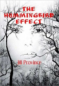 The Hummingbird Effect (book) by Jill Province