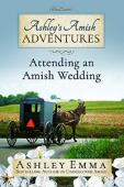 Ashley's Amish Adventures, Book 2 - Book cover