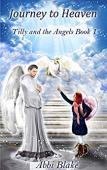 Journey to Heaven: Tilly and the Angels Book 1 - Book cover