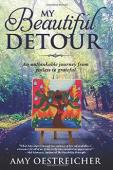My Beautiful Detour - Book cover