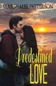 Predestined Love - Book cover