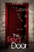 The Red Door (book) by E. H. James