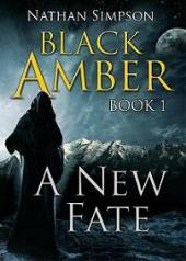 Black Amber - Book Image Did Not Load